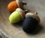 wool acorns