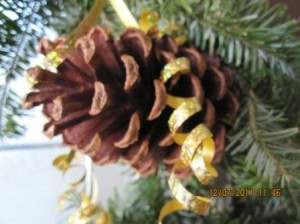 Pinecone Ribbon