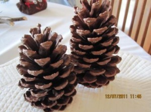 """Pinecone Decorations."""